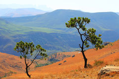 Road , path in Drakensberg Dragon mountains landscape Stock Photography