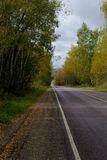 Road. Paved road in autumn forest Royalty Free Stock Images