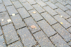 Road paved of brick stones in the fall. Cobble background Royalty Free Stock Images