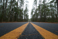 Road perspective. With two yellow lanes through dense wooded area Royalty Free Stock Photography