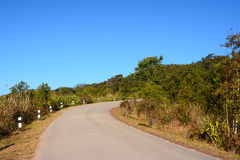 Road on Phu Rua mountain Royalty Free Stock Photo