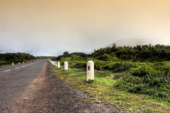 Road in Plateau of Parque natural de Madeira Stock Photo