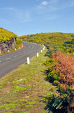 Road in Plateau of Parque natural de Madeira Royalty Free Stock Image