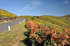 Road in Plateau of Parque natural de Madeira, Made Royalty Free Stock Photo