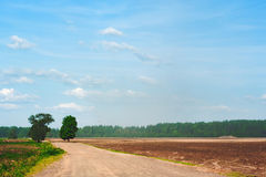 Road through the ploughed brown field Royalty Free Stock Photo
