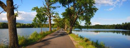 Road between ponds. Road between two blue ponds stock image