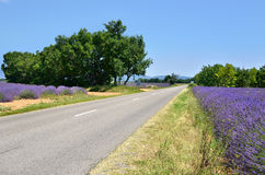 Road in Provence, France Royalty Free Stock Photo