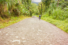 Road in rain forest in El Fosforo in Costa Rica. Stock Photography