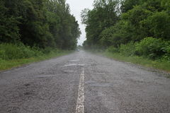 Road after a rain Stock Photography
