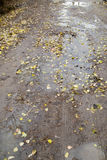 Road after rain. Work with your fingers on the keyboard on a laptop Royalty Free Stock Photo