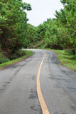 The road through the rainforest Royalty Free Stock Image