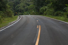 The road through the rainforest Stock Photography
