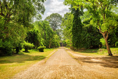 Road through rainforest in ancient Angkor Wat, Cambodia Stock Images
