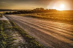 The road receding into the distance. The road through the woods, disappearing into the distance on the background of sunset royalty free stock image