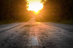 The road receding into the distance. The road through the woods, disappearing into the distance on the background of sunset stock images