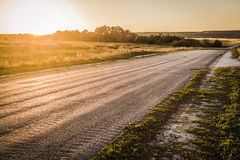 The road receding into the distance. The road through the woods, disappearing into the distance on the background of sunset stock photography