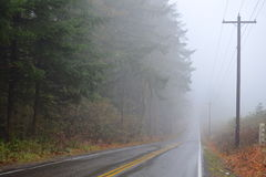 Road receding into fog. A country road receding into a thick layer of fog Royalty Free Stock Photo