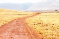 Red road in ngorongoro national park. Road of red ground in ngorongoro national park, tanzania. street to horizon stock photos