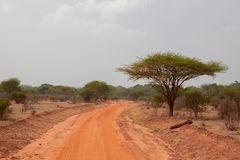 Road with red soil, landscape in Afrika. On safari in Kenya Royalty Free Stock Images