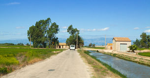 Road through the rice fields at Ebro Delta Royalty Free Stock Photo