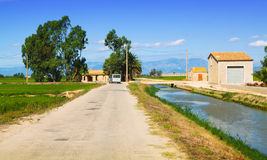 Road through the rice fields. Spain Royalty Free Stock Photo