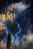 Road and river in autumn mountains Royalty Free Stock Image