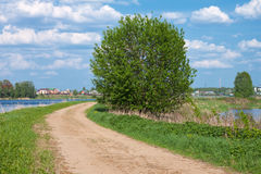 Road on a river coast Stock Image