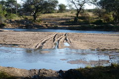 Road through river. This road  through  a  river   was  photographed on  a  farm  in  Namibia   in  the   okahandja  district Royalty Free Stock Photo