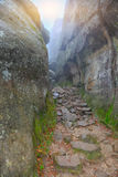 Road between rocks. Sunny day. Fallem leaves Stock Images