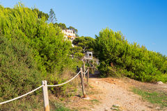 Road with rope handrail in a grove. In the mountain stock images