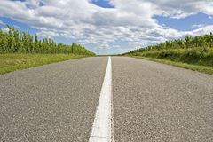 Road, route de vine. France. Royalty Free Stock Image