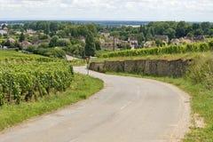 Road, route de vine. France. Stock Photo