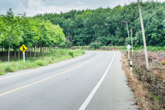 Road and rubber plantations Royalty Free Stock Images