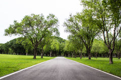 Road running through green field Royalty Free Stock Photography