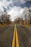 Road rural Stock Photography