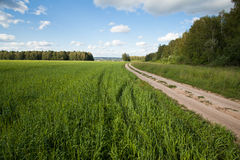 Road in rural area Royalty Free Stock Images