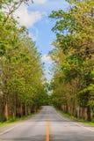 Road rural Royalty Free Stock Image