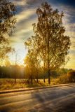 Road in rural district in autumn time Stock Photography