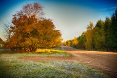 Road in rural district in autumn time Royalty Free Stock Photos