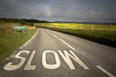 Road in rural landscape. Dorset, uk royalty free stock images