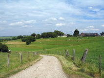 Road through a rural landscape in Limburg (Netherlands) Stock Photography