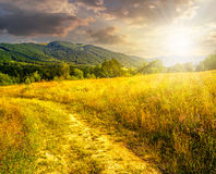 Road through a rural meadow on the hillside at sunset. Rural landscape. road through a large grassy meadow on hill side with some trees in evening light royalty free stock photography