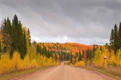 Road in russian taiga stock photography