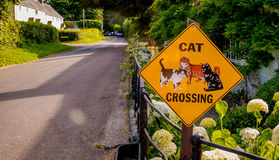 Road Safety Sign Cat Crossing. This lovely road safety sign, warning motorists that there are cat's crossing, was spotted outside of a countryside home Royalty Free Stock Photos