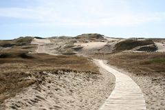 Road into the Sand. A road into the sand in Lithuania stock image