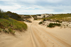Road in sand dunes at Cape Cod Royalty Free Stock Photography