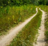 Road on sandy soil in a meadow near the forest. Summer season in the countryside Stock Photography
