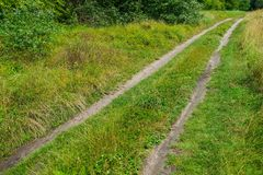 Road on sandy soil in a meadow near the forest. Summer season in the countryside Royalty Free Stock Photo
