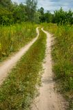 Road on sandy soil in a meadow near the forest. Summer season in the countryside Stock Images