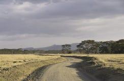 Road by savanna Royalty Free Stock Photos